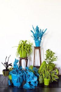 Giacomo_Cossio_piante-5_FA